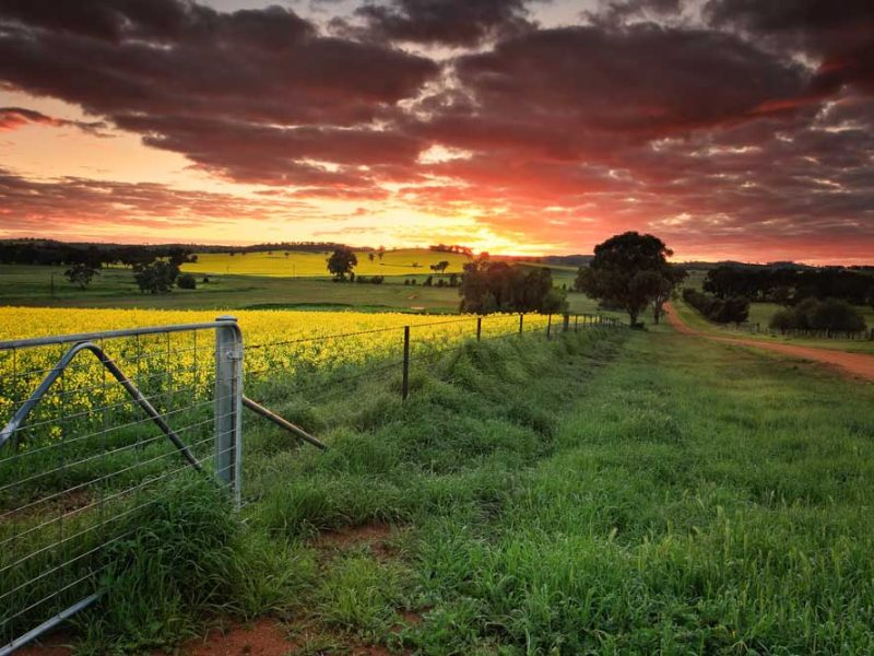 Sunset Rural Australia