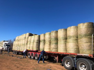 Selina in Cumnock with Farmers ~ Bale delivery